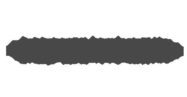 Professional Edition